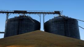 Embarque de milho do Brasil em agosto deve cair mais que o de soja, aponta Cargonave