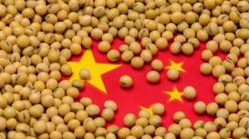 USDA informa nova venda de 132 mil t de soja para a China nesta 5ª feira