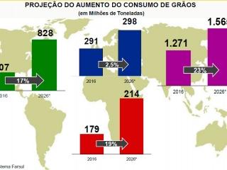 Grafico Da Luz - Destaque de video