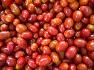 foto cna tomate tomate cereja