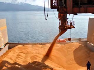 Exportação de soja destaque video