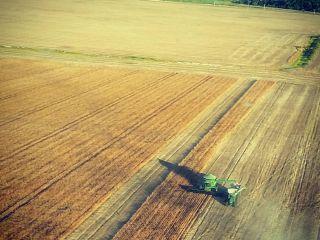 Imagem do dia - Colheita da soja em Roraima