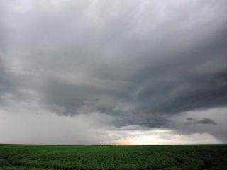 chuva no campo destaque 2 video
