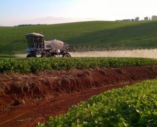 Aplicação de fungicida na lavoura de soja em Tapejara (RS), da Família Conte