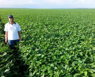 Leandro Wiegert na lavoura de soja em Campo Novo do Parecis (MT)