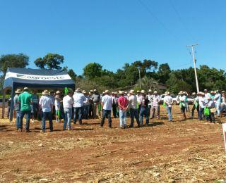 Dia de campo em Quedas do Iguaçu (PR)