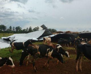 Estragos causados pelas chuvas em Três Passos (RS), após quase um mês de seca