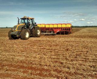 Plantio de milho safrinha em Douradina (MS), dos produtores Juca e Cesar