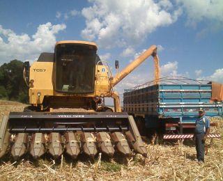 Colheita de milho em Saldanha Marinho (RS). Enviado pelo Técnico Agrícola Daniel Ledur