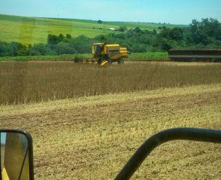 Início da colheita de soja em Assis Chateaubriand (PR), do produtor Marcos Paulo Pastori