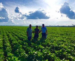 Fazenda Ouro Verde em Santana do Araguaia (PA), do produtor Nilton Militao. Enviado por  Toin Agrofarm