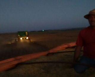 Colheita da soja em Paulistânia (PR). Enviado por Marcos Ruths