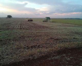 Colheita de soja, seguido pelo plantio de milho, da Família Polvani em Assis Chateaubriand (PR)
