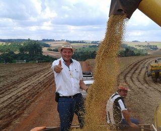 Colheita de soja em Nova Aurora (PR). Enviado pelo Técnico Agrícola David Clemente