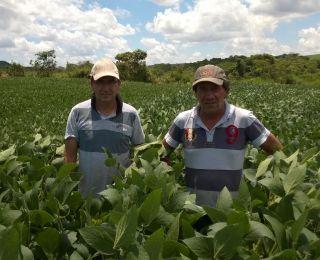 Everton e Ademir na lavoura de soja no município de Jataí (GO). Enviado pelo Engenheiro Agrônomo Hildo Antônio