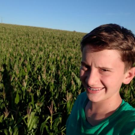 Plantação de milho em Guairá (PR). Envio de Marta Wenzel