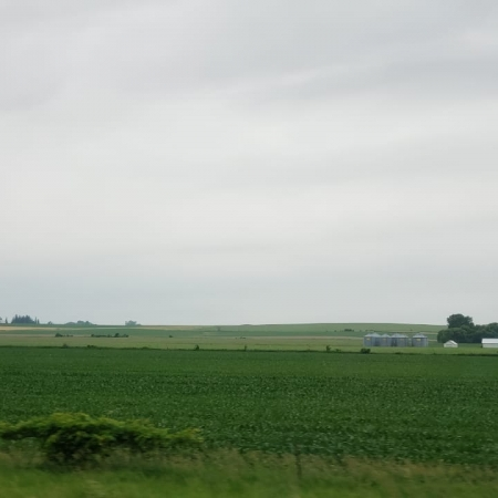 EUA lavouras Iowa lado leste Junho 2019