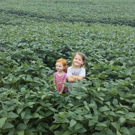 As pequenas Maitê e Alice todas lindas na lavoura de soja em Vitorino (PR) - Marco Mafioletti
