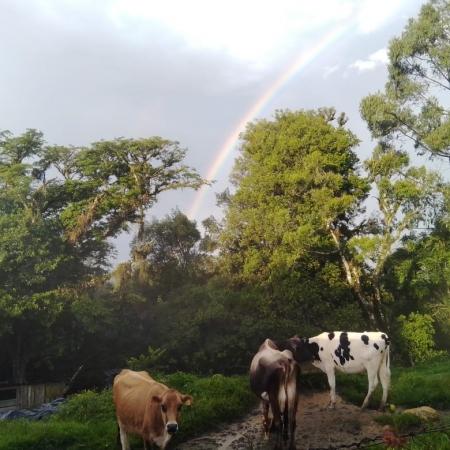 Arco íris em Alto Paraguaçu-Itaiopolis-SC Fotos de Paulo Marcelo Adamek