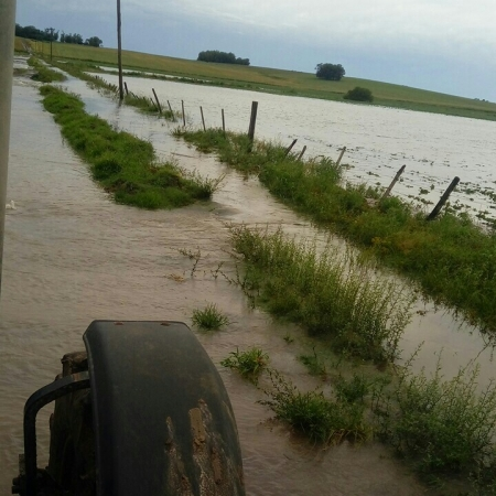 Enchente grande no Rio Santa Maria em Dom Pedrito (RS). Dos 120.000 ha que o município planta, 30.000 são à beira do rio. Envio de Rafael Rockenbach de Avila