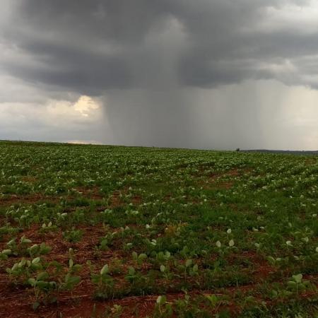 Chuva voltando ao normal na região de Jataí (GO). Envio do Engenheiro Agrônomo Hildo Antônio