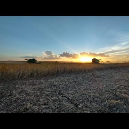 Colheita da soja em Barreiras (BA) - Abrahim Claudino da Silva Farage