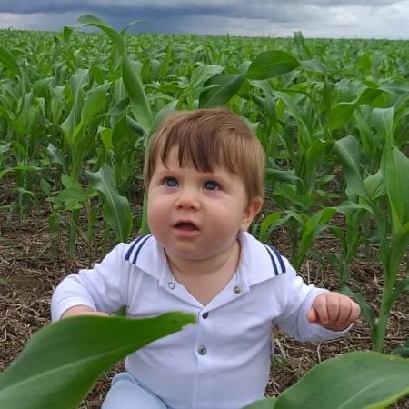 O pequeno Arthur na plantação de sorgo na nova Santa Rosa em Uruçuí (PI) - Claudineia Giboski