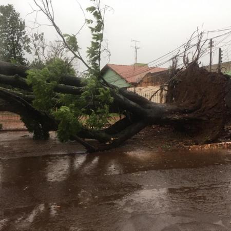 Chuvas em Itaporã-MS - 2610