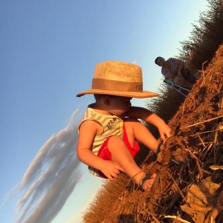 Safra 2021 na Fazenda Miguel Arcanjo Vieira de Paula na cidade de Santa Dê Del (PR) - Silvia de Cristo