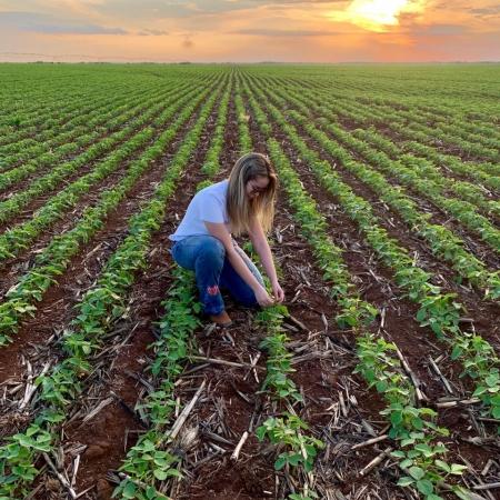 Plantio soja 2019/20 - Primavera do Leste/MT - áreas irrigadas