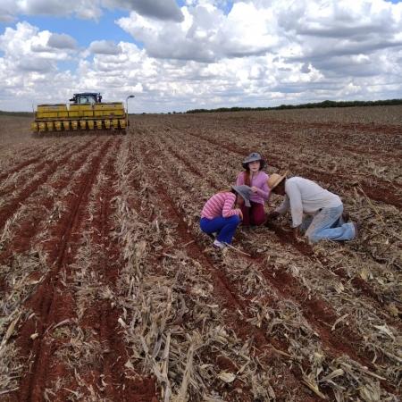 Família Mansano, plantio de soja na Fazenda Vale da Bonança, em São Pedro do Turvo (SP). Envio de Jetro Mansano Inigo