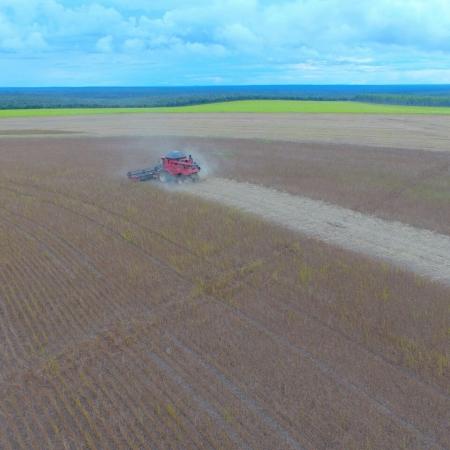 Lavouras de soja da região de Campos de Julio - MT | Foto: Tiago Daniel Comiran