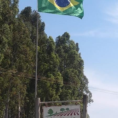 7 de Setembro - Viveiro Ouro Verde, Mudas de Café - Timburi (SP) - Envio de Cleiton Corcovia