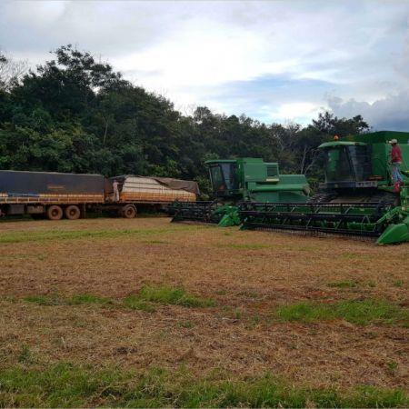 Encerramento da colheita em Comodoro (MT)