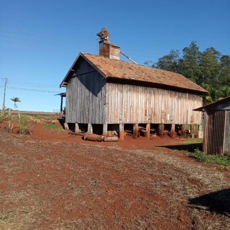 Tulha e secador de café no sítio Sambugari em Cambé norte do Paraná - Ocimar Sambugar
