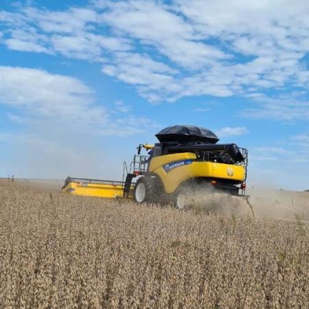 A doutoranda Cleiva Giusmin em desenvolvimento de pesquisa e acompanhamento de colheita contabiliza bons rendimentos para a safra 2021 no noroeste do (RS)
