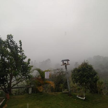 Chuva hoje zona da mata Foto de Deivisson
