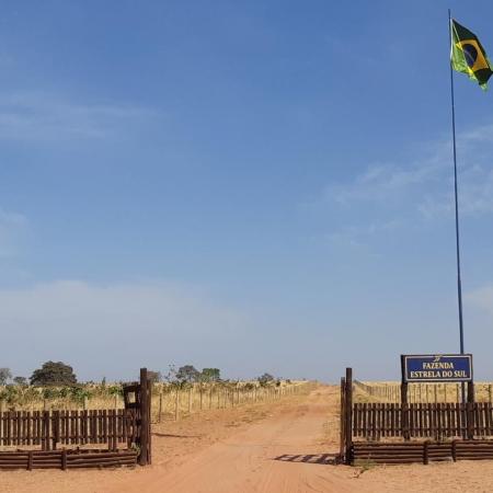 7 de Setembro - Fazenda Estrela do Sul - General Carneiro (MT) Envio de Téia Fava.