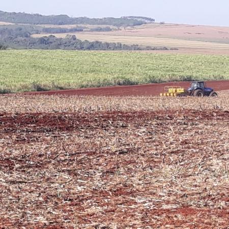 Plantio da soja no Paraná - Valdir Fries