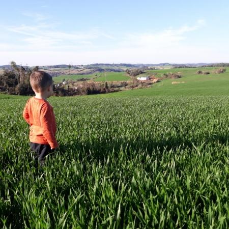Lorenzo Zanetti vistoriando lavoura de trigo em Sarandi (RS). Envio de Diego Zanetti