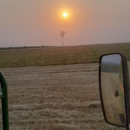 Colheita trigo. Entre Rios do Oeste- PR. Aurelio Maldaner
