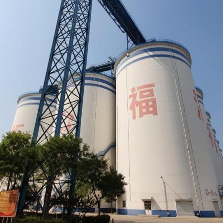 CropTour 2019 - Yanjiao station - hopefull Grain - China