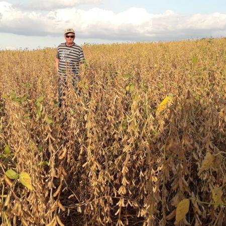 Imagem da Fazenda Jaboticabal, em Coronel Vivida (PR). Envio de Helio de Carli