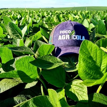 Área de soja em coronel bicaco  Variedade DM 57i52 IPRO  Empresa foco agrícola Rio Grande do Sul