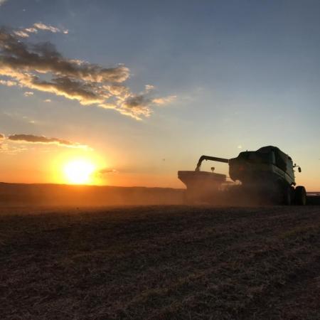 Registro da colheita de soja em Mangueirinha (PR) - Edina Franciosi @e_franciosi