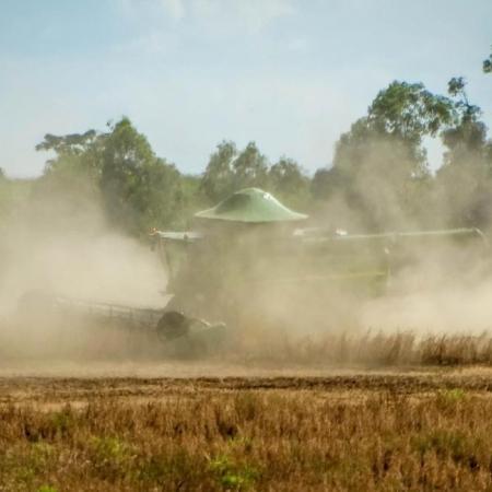 Colheita soja 2021 em Palotina (PR) - Adinar Lettrari