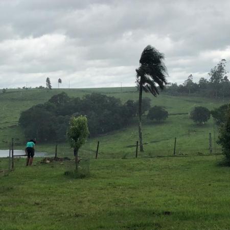 Chuvas nesta segunda-feira (07) no Rio Grande do Sul - Foto: Reprodução/Redes sociais