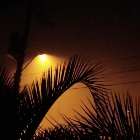 Neblina aqui em Alto Paraguaçu Itaiópolis-SC