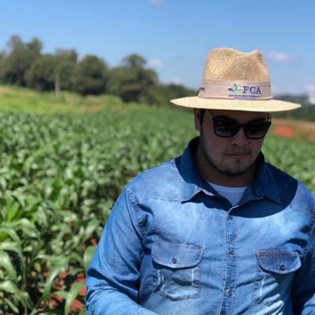 Plantação de milho em Bauru (SP). Envio de Bryan Morais