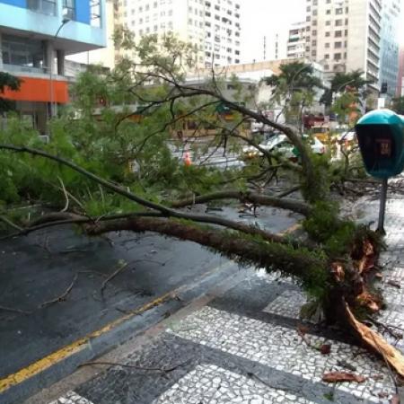 Estragos por conta das chuvas na região metropolitana de Curitiba (PR) - Reprodução/RPC